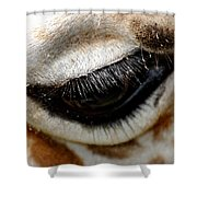 Lashes On The Eye Shower Curtain
