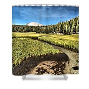 Lassen Meadows Shower Curtain
