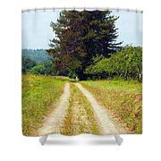 Last Of The Great Trees Shower Curtain