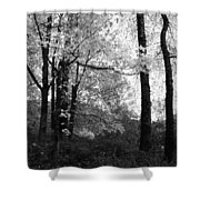Lasting Leaves Shower Curtain
