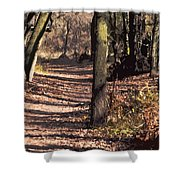 Late Afternoon Walk Shower Curtain