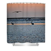 Late Comers Shower Curtain
