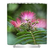 Late May Color Shower Curtain