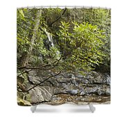 Laurel Falls 6226 Shower Curtain by Michael Peychich