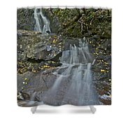 Laurel Falls 6239 8 Shower Curtain by Michael Peychich