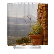 Lavender And Rock Shower Curtain