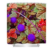 Lavender Berry Shower Curtain