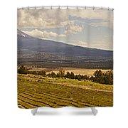 Lavender Farm Panorama Shower Curtain