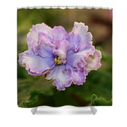 Lavender Frost Shower Curtain