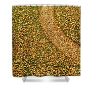 Lawn Covered With Fallen Leaves Shower Curtain