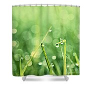 Le Reveil - S02b3 Shower Curtain by Variance Collections