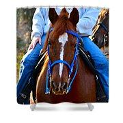 Lead Horse Shower Curtain