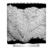 Leaf Design- Black And White Shower Curtain
