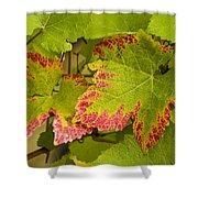 Leaf Design Shower Curtain