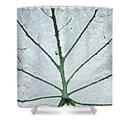 Leaf Hortus Botanicus, Close-up Shower Curtain