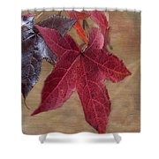 Leaf In Red Shower Curtain