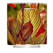 Leaf Lines Shower Curtain