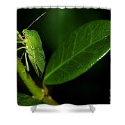 Leaf Me Alone Shower Curtain