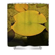 Leaf On A Pond Shower Curtain