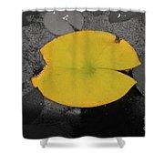 Leaf On A Pond II Shower Curtain