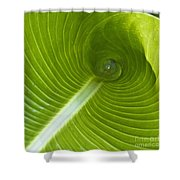 Leaf Tube Shower Curtain