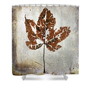 Leaf  With Textured Effect Shower Curtain