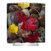 Leafs And Stones Shower Curtain
