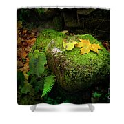 Leafs On Rock Shower Curtain