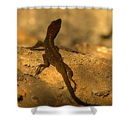 Leapin' Lizards Shower Curtain