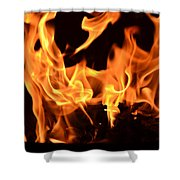 Leaping Flames Shower Curtain