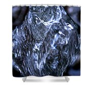 Leaping H2o Shower Curtain