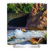 Leasburg Dam New Mexico Shower Curtain