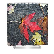 Leave The Leaves Shower Curtain