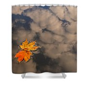 Leaves In Water Shower Curtain