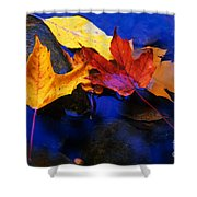 Leaves Of Autumn Shower Curtain