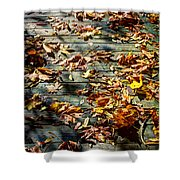 Leaves On The Boardwalk Shower Curtain