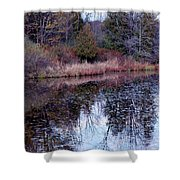 Leaves On Water Shower Curtain