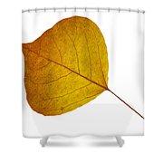 Leaves Ten  Shower Curtain