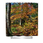 Leaving Cary Lake Shower Curtain