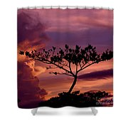 Leeward Oahu Shower Curtain