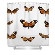 Left To Right, From Top Nymphalid Shower Curtain