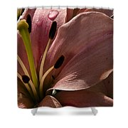 Leftover Lily Shower Curtain