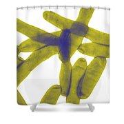 Legionella Pneumophila Shower Curtain