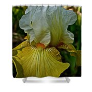 Lemon Petals Shower Curtain