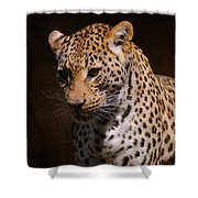 Leopard I Shower Curtain