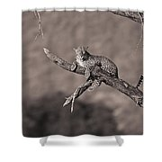 Leopard Panthera Pardus In A Tree Shower Curtain