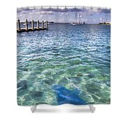 Leopard Ray Shower Curtain