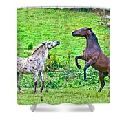 Leopard V Standardbred Shower Curtain
