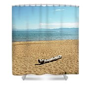 Let Sleeping Logs Lie Shower Curtain