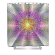 Let There Be Light 2012 Shower Curtain